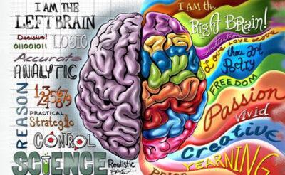 Diestros y Zurdos cerebrales